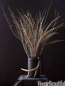 Pheasant Feathers - Neat!