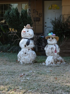 Snow/Grass People!